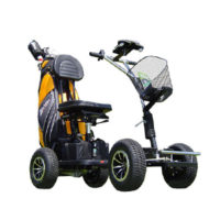 golf buggy batteries sub image