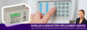 Alarm Battery Replacement Service